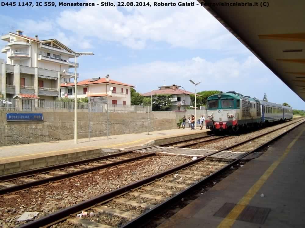 D445 1147-IC559-Monasterace-2014-08-23-RobertoGalati 3